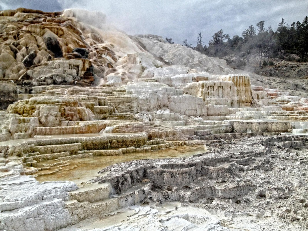 Mammoth Hotsprings, Yellowstone